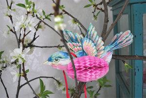 HONEYCOMB´s Lovebirds 3pack