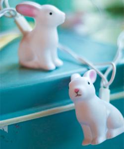 LJUSSLINGA kaniner